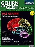 Das Gehirn: Aufbau und Funktion (Gehirn&Geist Basiswissen)