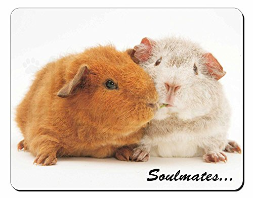 Soulmates ' Guinea Pigs Tappetino mouse del computer pad regalo di natale