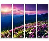 Paul Sinus Art Leinwandbilder | Bilder Leinwand 130x90cm 4 Teile Bergwiese mit Rosa blühenden Rhododendren