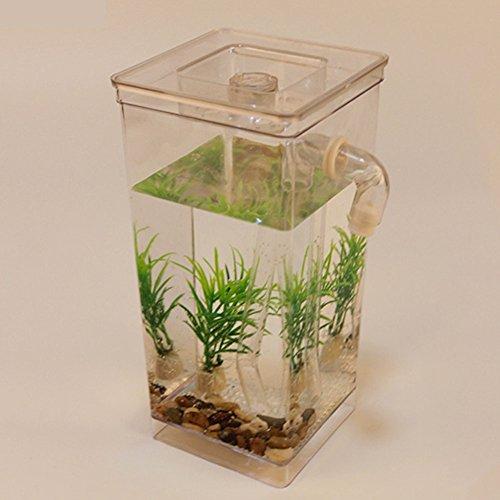 Aquarium Fisch Tank, Mini Klar All Pond Solutions Schreibtisch Nano Aquarium LED-Lichter Premium Kit Starter Set, Fisch Tank Ornaments, Ruhige Naturklänge