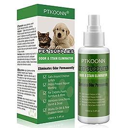 Pet Smacchiatore,Smacchiatore Per Animali,Stain e odore Remover per Cani,Smacchiatore per l'odore di urina, Pulisce i tappeti, Rimuove le Macchie d'urina degli Animali Domestici