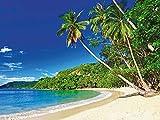 Artland Qualitätsbilder | Glasbilder Deko Glas Bilder 60 x 45 cm Karibik Palmen Strand Tropen Küste F7OX