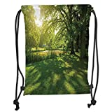 ZKHTO Drawstring Sack Backpacks Bags,Green,Summer Park in Hamburg Germany Trees Sunlight Forest Nature Theme Scenic Outdoors Picture,Green Soft Satin,5 Liter Capacity,Adjustable String Closur