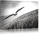 Majestic Bald Eagle Disegno a carboncino effetto, formato: 120x80 su tela, XXL enormi immagini completamente Pagina con la barella, stampa d'arte sul murale con telaio, più economico di pittura o un dipinto a olio, non un manifesto o un banner,
