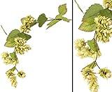 AUSLAUF Hopfen Zweig, Kunstpflanze mit einer Länge von 90cm - Brauerei Deko Kunsblumen künstliche Blumen Kunstpflanzen künstliche Pflanzen Blumen