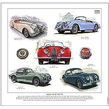 Stampa di Jaguar XK–-- XK120, XK140& XK150–1948–61