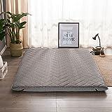 hxxxy Tatami,Materasso letto futon Molto spesso Materasso tradizionale Japanese-C 150x200cm(59x79inch)