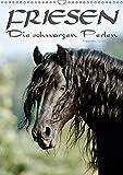 Friesen - die schwarzen Perlen (Wandkalender 2019 DIN A3 hoch): Friesen - besonders schöne, herrlich lackschwarze Pferde (Monatskalender, 14 Seiten ) (CALVENDO Tiere)