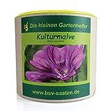 Keimsamen Kulturmalve 80g I Keimsprossen zur Bodenverbesserung I Ideale Insektenweide mit violetten Blüten I Saatgut Sylva Kultur-Malve für 80 m²