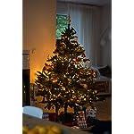 SnowEra Catena Luminosa a Lampadina da 50 m con 400 LED |Illuminazione Natalizia per Albero di Natale Adatta ad Interni ed Esterni con Timer – Colore Luce: Bianco Caldo
