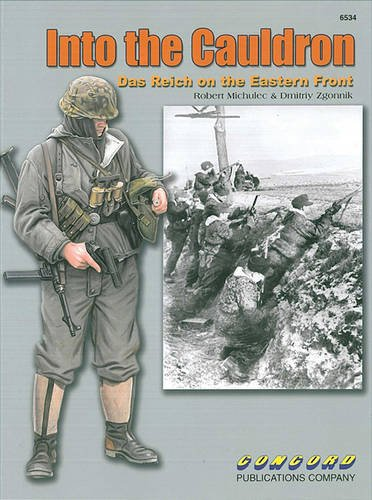 6534: into the Cauldron: Das Reich on the Eastern Front por Robert Michulec