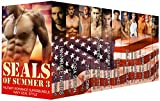SEALs of Summer 3: Military Romance Superbundle~Navy SEAL Style