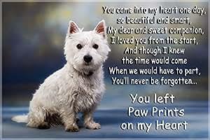 Westie West Highland white terrier pet loss bereavement