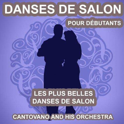 Danses de salon pour d butants les plus belles danses de for Danses de salon en ligne