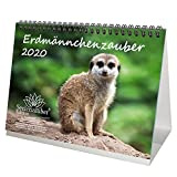 Erdmännchenzauber DIN A5 Tischkalender 2020 Erdmännchen - Seelenzauber