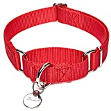 """Dazzber Martingale Collars for Dogs, Enthusiastic Red, Neck 15""""-25"""", Strong and Durable Dog Collar for Walking Training"""