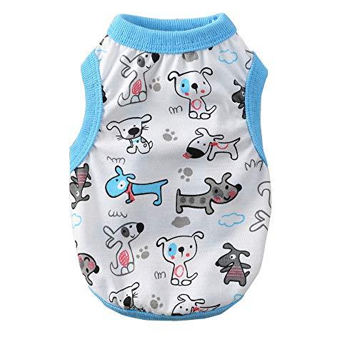BT Bear Haustierkleidung, für kleine Hunde, Welpen, Kleidung für kleine Hunde und Katzen