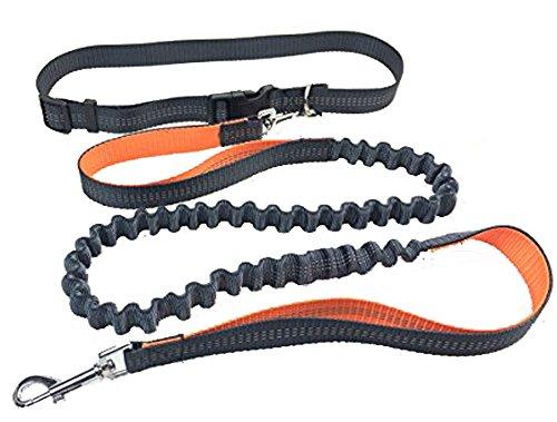 Sling Assembly (Longwu Einstellbare Haustiere Traktionsseil Nylon Reflektierende Draht Hundeleine und Gürtel 1.6M-1.9M Orange)