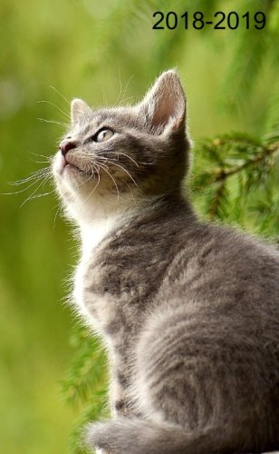 2018 - 2019: Kitten. 2 - Years Pocket Planner. Lettering handbook (Weekly Monthly Planner) por Pocket Planner