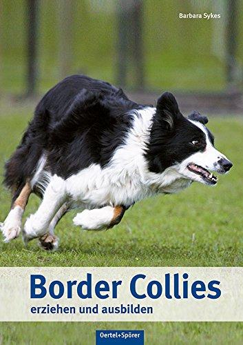 border-collies-erziehen-und-ausbilden
