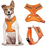 KEINE HUNDE (nicht gut mit anderen Hunden) Orange Farbe Coded Non-Pull-Front und Rückseite D Ring Gepolsterte und wasserdichte Weste Hundegeschirr verhindert Unfälle durch andere Ihren Hund in Vorwarnleuchte (kleine Hals bis zu 31 cm Brust 36-58cm)