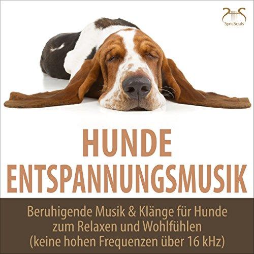 Entspannungsmusik & Wellenrauschen für Hund, Frauchen & Herrchen, low pass filter (16kHz)