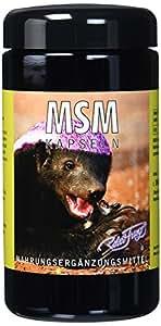 Original MSM Kapseln von Robert Franz