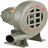 Ventilateur De Foyer pour Barbecue Ventilateur De Barbecue Centrifuge avec R/égulateur 200W shcc Souffleur De Forge /Électrique Blacksmith