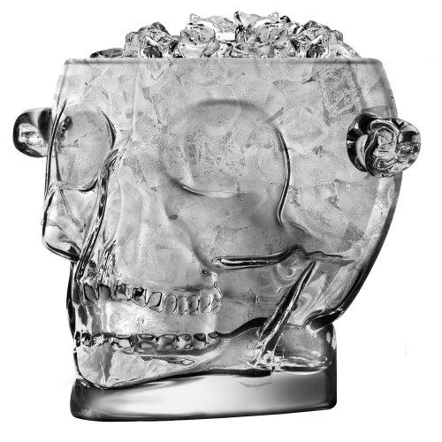 Cráneo cubo de hielo