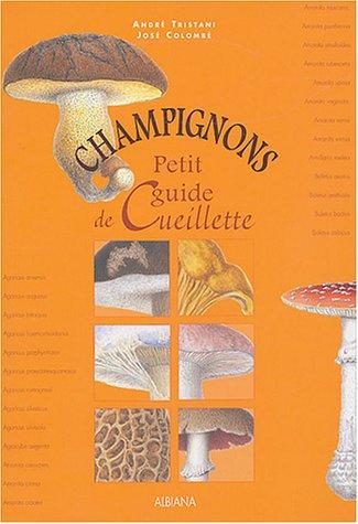 Champignons : Petit guide de cueillette