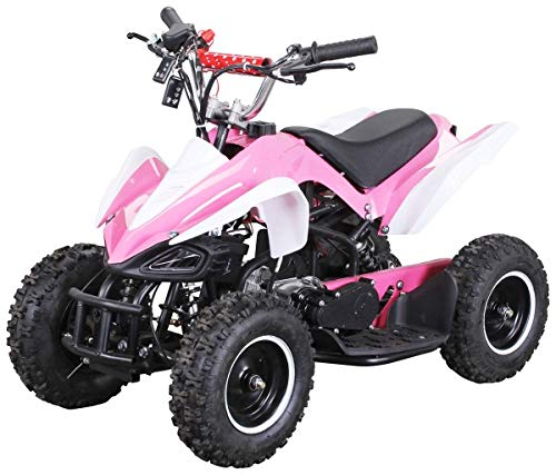Actionbikes Motors Kinder Miniquad ATV Racer 49 cc - Scheibenbremsen - Luftbereifung - Drosselbar - Fernbedienung