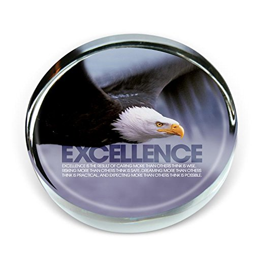 Successories 721877 Excellence Eagle Positive Outlook Briefbeschwerer -