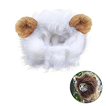 Déguisement pour chat crinière de lion perruque avec scratch Blanc