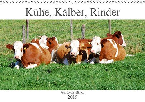 Kühe, Kälber, Rinder (Wandkalender 2019 DIN A3 quer): Zu den häufigen Nutztieren gehören Kühe und Rinder. Wenn ein Winter mild ist, trifft man sie ... (Monatskalender, 14 Seiten ) (CALVENDO Tiere)