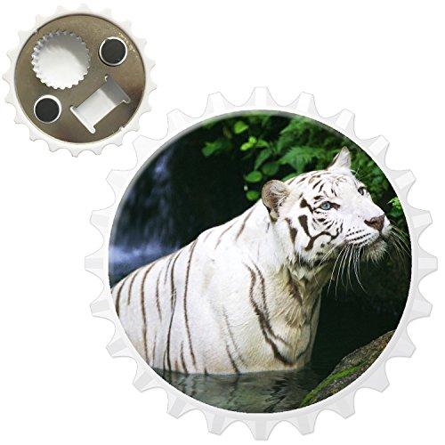 Weißer Tiger versteckt sich im Wasser Kühlschrankmagnet mit Flaschenöffner