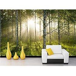 Wqavten Papier Peint 3D Forêt Ensoleillée, Grand Arbre, Paysage Naturel, Salon, Fond De Télé, Décoration De La Maison-150Cmx100Cm