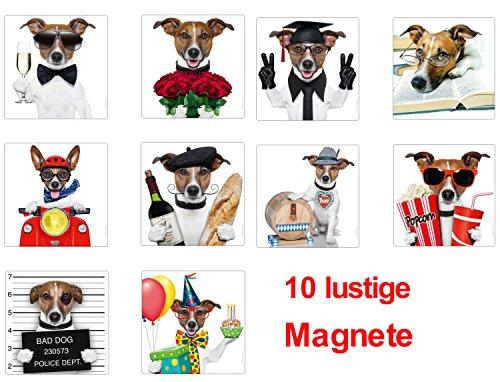 """Lustiges Kühlschrankmagnete Set für Kinder: """"CHICO: DER KULT-HUND"""" - 10 Kühlschrank-Magnete im günstigen Set mit einem witzigen Jack Russell Terrier"""