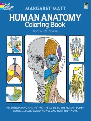 Human Anatomy Coloring Book (Dover Children's Science Books) (Edition 1) by Matt, Margaret, Ziemian, Joe [Paperback(1982¡ê?]