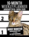 2018-2019 Weekly Planner - Most Wanted Savannah Cat: Daily Diary Monthly Yearly Calendar Large 8.5