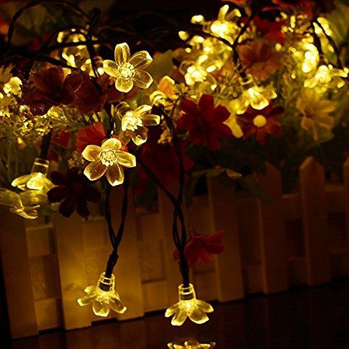 (Berocia Wetterfeste LED Lichterkette Warmweiss Solar Außen mit batterie, 7 Meter 50 LED Pfirsichblüte 2 Modi Weihnachtsbeleuchtung für Haus, Garten, Rasen, Weihnachten, Hochzeit und Urlaub Dekoration)