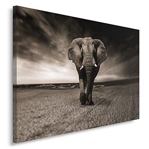 Feeby. Cuadro en lienzo - 1 Parte - 60x80 cm, Imagen impresión...