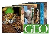10-er Packung: Die 10 tierischsten GEO-Postkarten +++ MIX Nr. 2 +++ von modern times