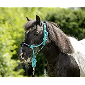USG Knotenhalfter mit Strass türkis Shetty/Pony