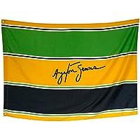 Ayrton Senna Fahne Sempre