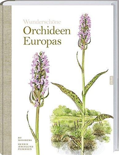 Orchideen Praxisratgeber Garten)