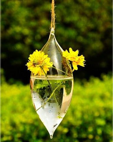 Forme d'olive 2 trous de fleur en verre suspendu Vase