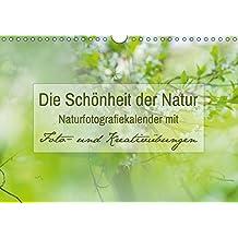 Die Schönheit der Natur -  Naturfotografie-Kalender mit Foto- und Kreativübungen (Wandkalender 2017 DIN A4 quer): Traumhafte Naturfotos mit Foto- und ... 14 Seiten ) (CALVENDO Hobbys)