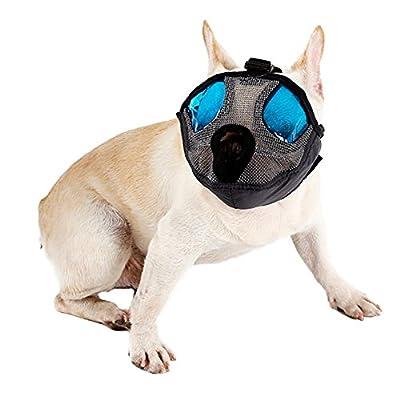 DELIFUR Dog Muzzles Mesh Short Snout Dog Pet Muzzle Anti Bite Mask Brethable Mouth Muzzles Basket for Bulldog Pug and SharPei (M, Orange) from DELIFUR
