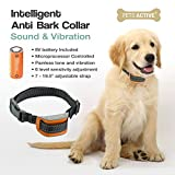 Kein Bark Dog Trainingskragen von Pets Active Humanely Stoppt Barking mit Sound und Vibration