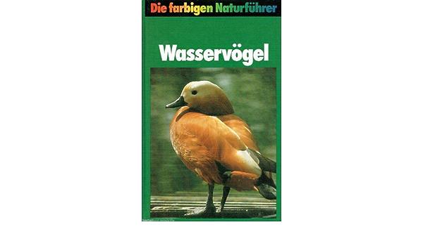 Steinbachs Naturfuhrer Wasservogel Amazon De Sauer Frieder Und Fritz Wendler Bucher